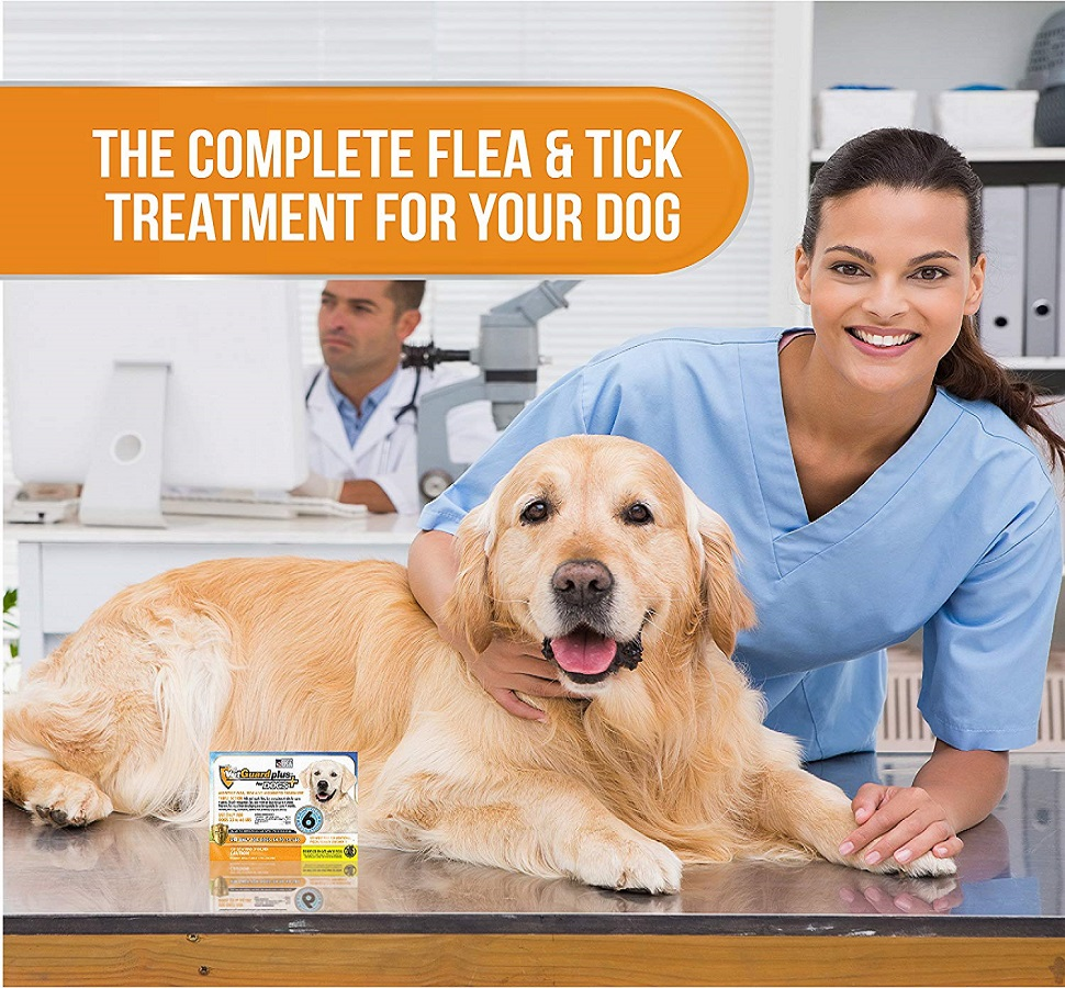 VetGuard Plus Flea & Tick Treatment