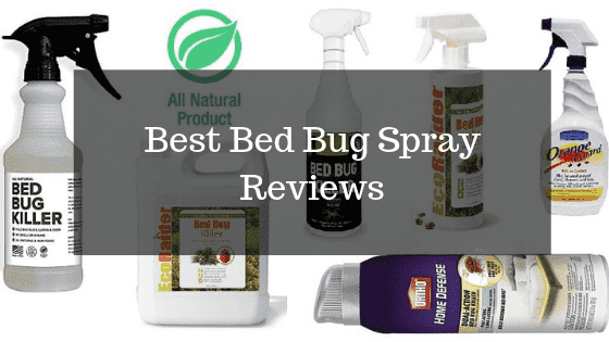 Best Bed Bug Spray Reviews 2020 – Buyer's Guide