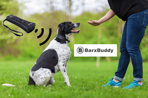Barx Buddy Device Reviews – Buyer's Guide